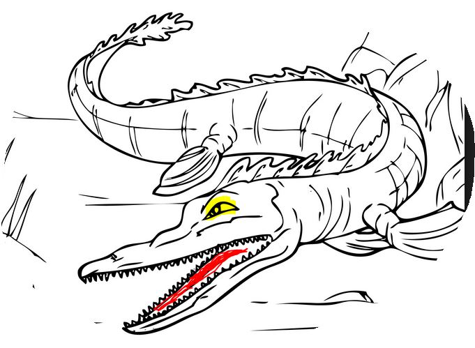 Alligator Coloring Pages Kids Activities Aligator Coloring Pages